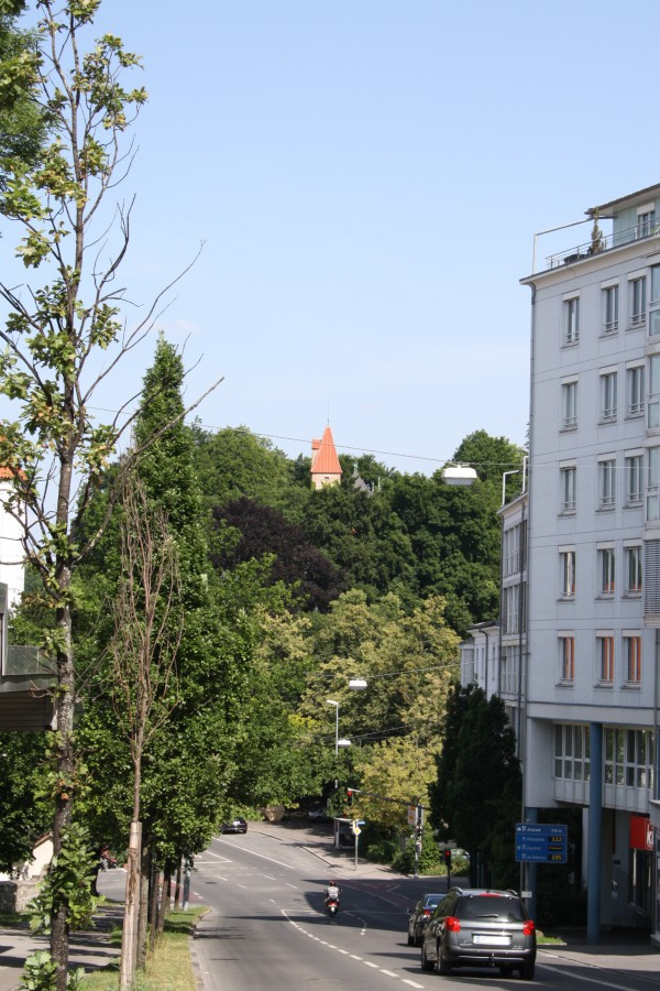 Blick vom Freudenberg in Richtung Burghalde. Foto: Dietmar Markmiller